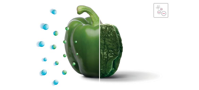 Ионизатор воздуха в холодильнике – полезное устройство или рекламный ход?