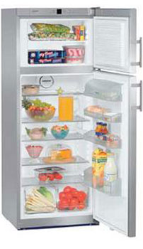 двухкамерный холодильник Liebherr CTPesf 2913