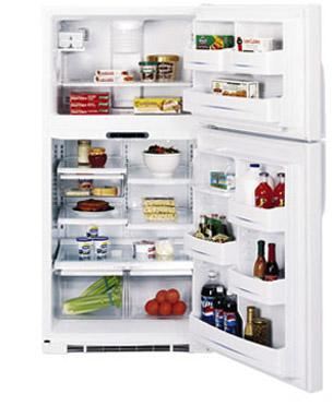 двухкамерный холодильник General Electric GTG 16 HBM WW