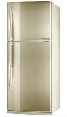 двухкамерный холодильник Toshiba GR-M54TR