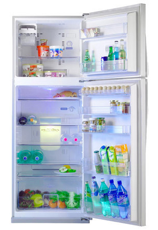 двухкамерный холодильник Toshiba GR-M59TR
