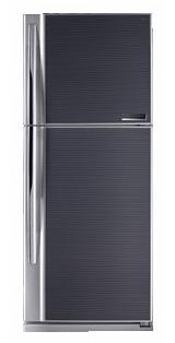 двухкамерный холодильник Toshiba GR-MG59RD GB