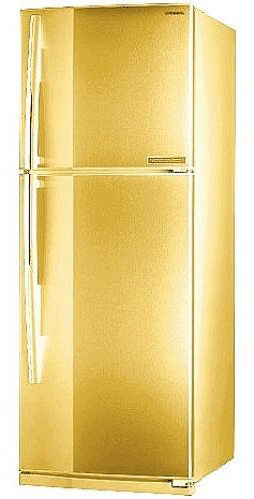 двухкамерный холодильник Toshiba GR-R49TR-SC