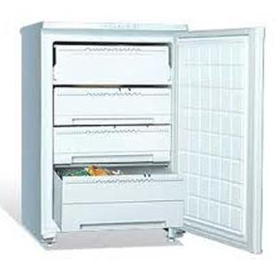 морозильник BEKO  TS1 66020