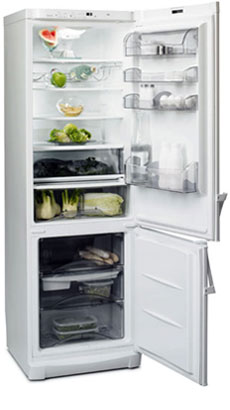 двухкамерный холодильник Fagor 2FC-47 NF