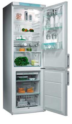 двухкамерный холодильник Electrolux ERB 8643