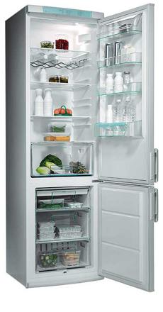двухкамерный холодильник Electrolux ERB 9044