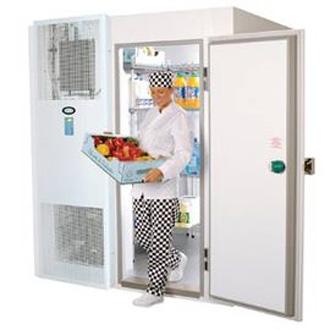 морозильная камера Foster Refrigerator PL1509L