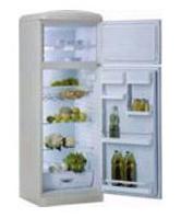 двухкамерный холодильник Gorenje RF 6325 E