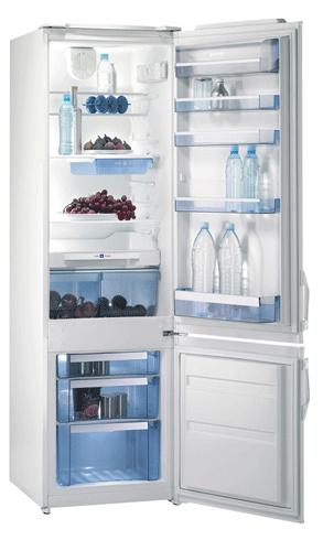 двухкамерный холодильник Gorenje RK45295W