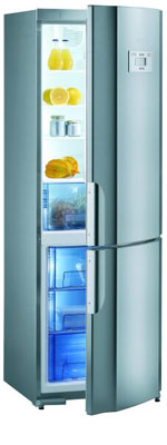 двухкамерный холодильник Gorenje RK 63341 E