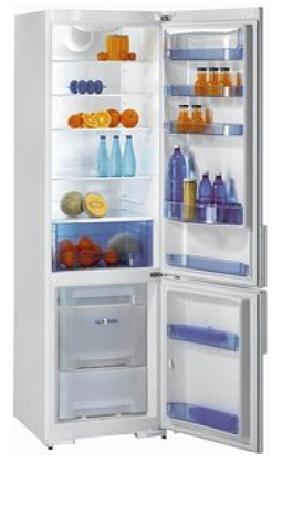 двухкамерный холодильник Gorenje RK 63393 W