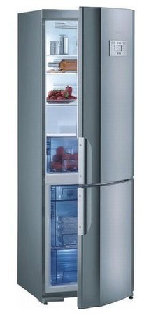 двухкамерный холодильник Gorenje RK 65325 E