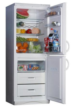 двухкамерный холодильник Snaige RF 300-1801A