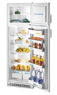 двухкамерный холодильник Zanussi ZD 22/6 R
