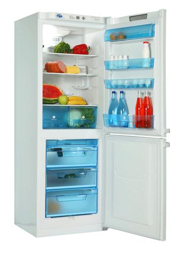 двухкамерный холодильник POZIS (Позис)  RK-124