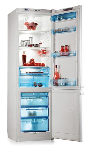 двухкамерный холодильник POZIS (Позис) RK-126